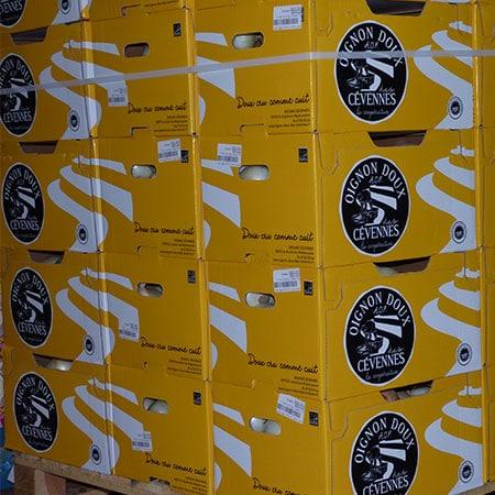 Oignons doux des Cévennes: Le carton jaune pour la catégorie premium (10 kg)