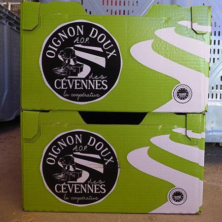 Oignons doux des Cévennes 10 kg